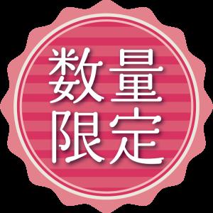 icon022