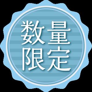 icon023
