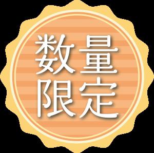 icon024